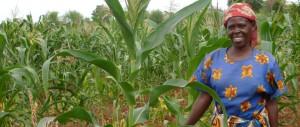 Photo source: Farm Africa